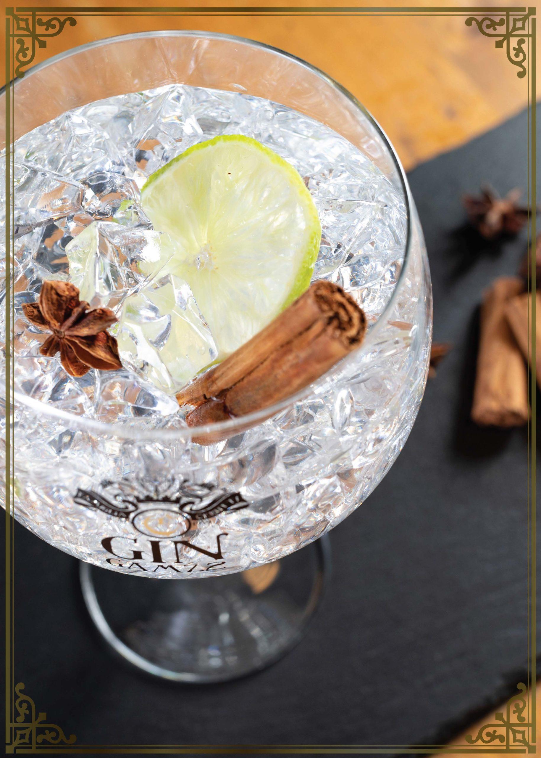 gin-adn-tonic-punto-bere